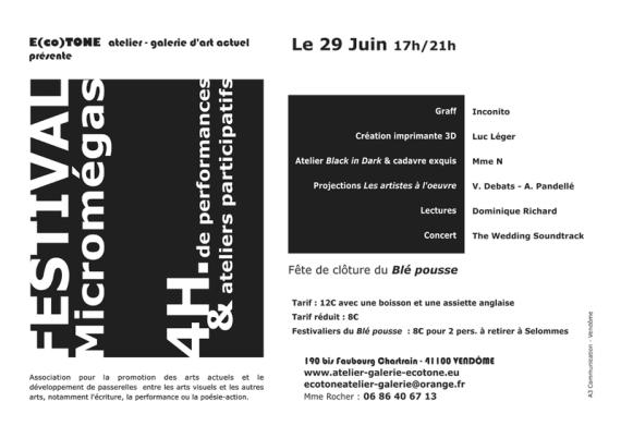 Festival Micromégas  29 juin 2014 17h à 21h