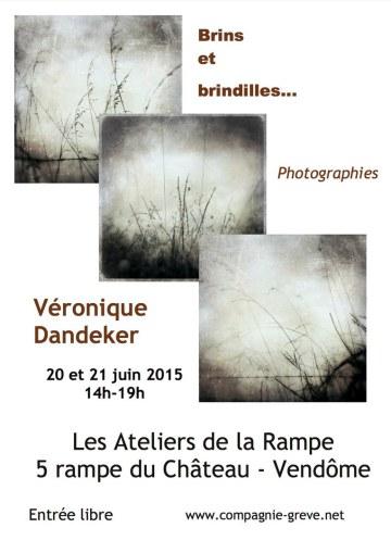 Exposition Véronique Dandeker juin 2015.jpg